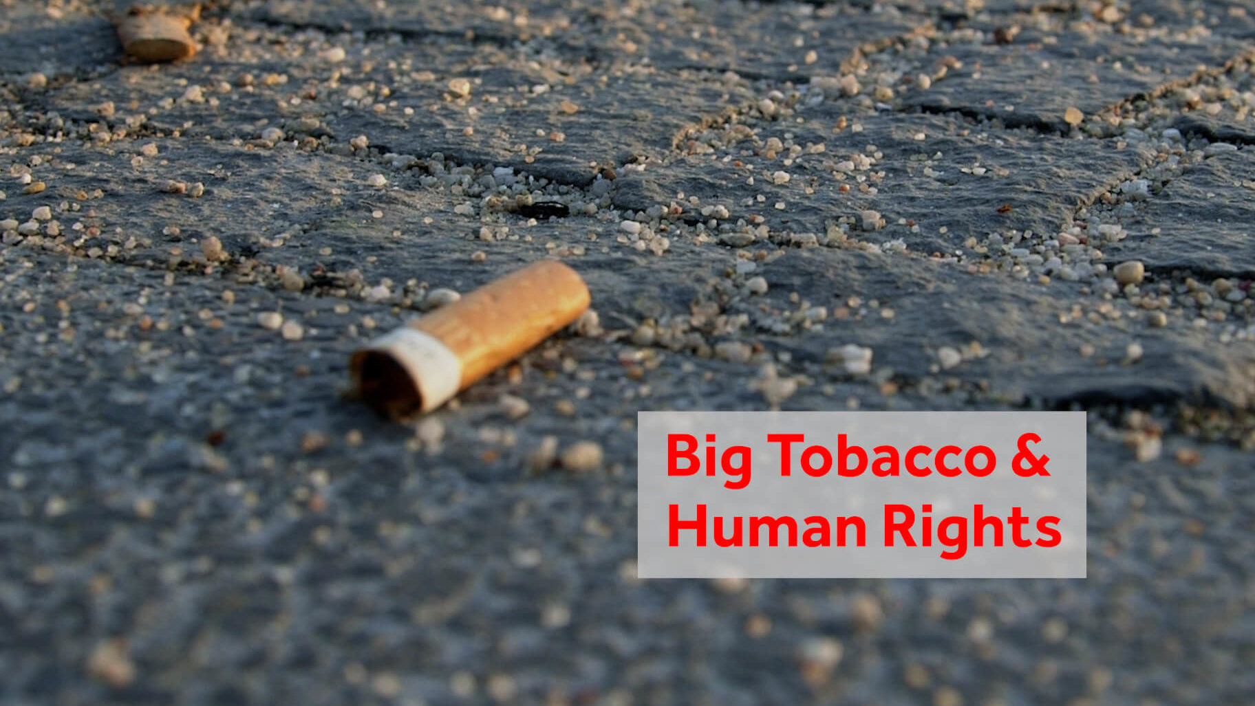 Human Rights Tools and the Fight Against Big Tobacco