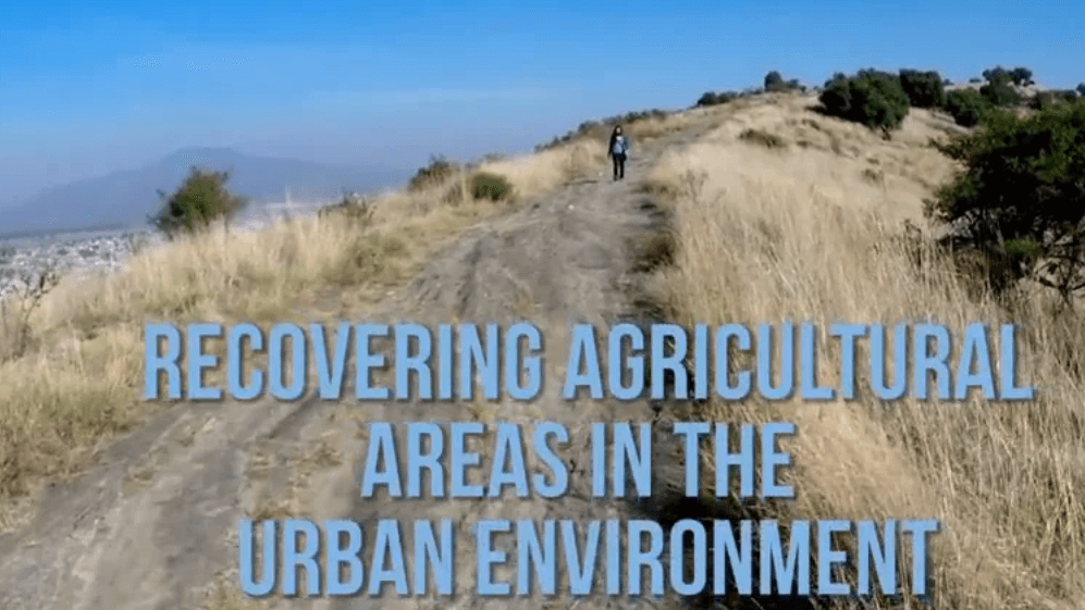Recovering Agricultural Areas in the Urban Environment